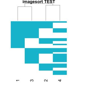 imagesort